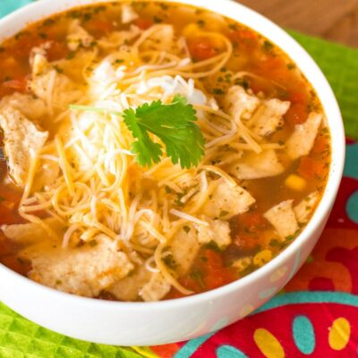 In-a-Hurry Easy Mexican Chicken Soup