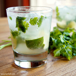 Cilantro Margarita: A fresh twist on a classic cocktail!