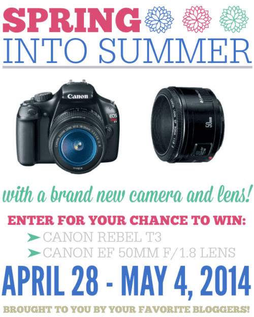 Spring into Summer DSLR Camera Giveaway | The Weary Chef
