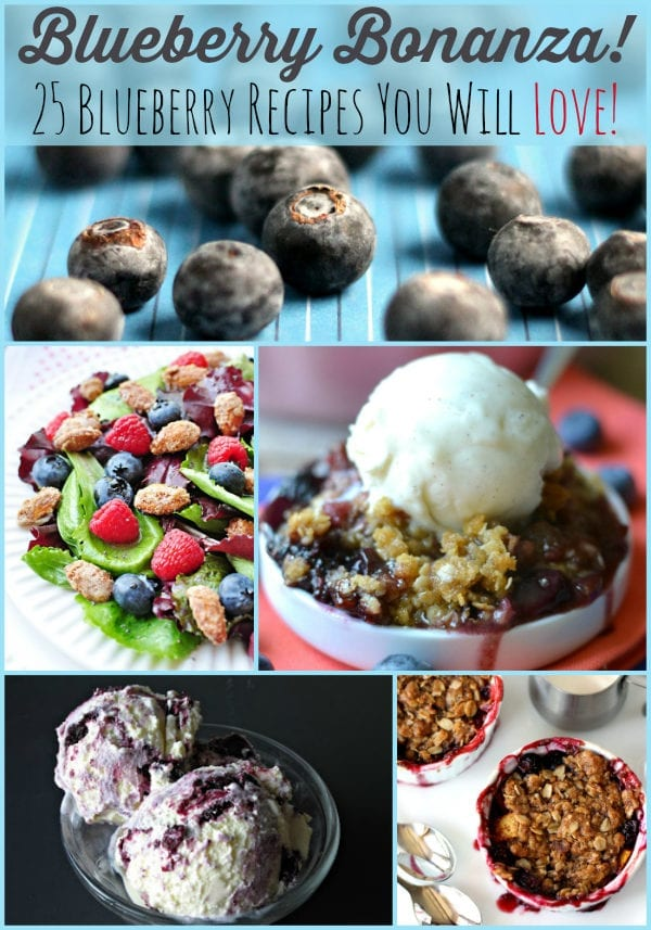 Don't miss these 25 Blueberry Recipes from some of your favorite bloggers!