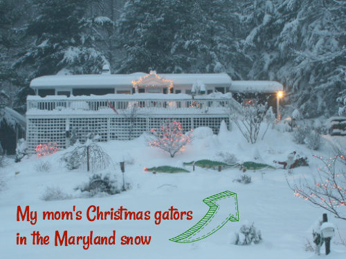 Gators Pulling Santa's Sleigh in Maryland