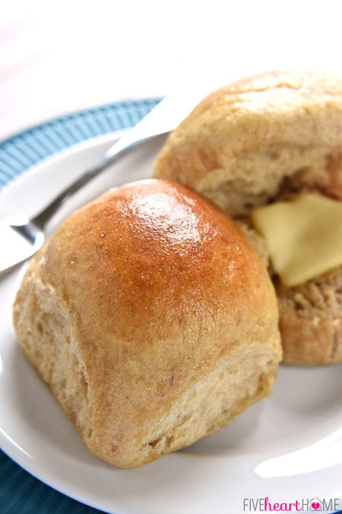 Whole Wheat Dinner Rolls // Five Heart Home