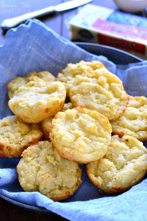 Easy Cheesy Muffin Tin Biscuits by Lemon Tree Dwelling