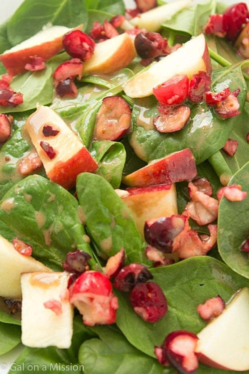 Apple Cranberry Spinach Salad - Love Bakes Good Cakes