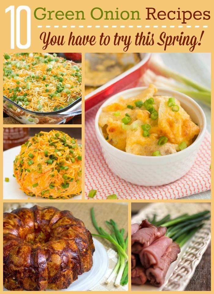 Whether you call them scallions or green onions, you need to use them in these ten fab recipes!