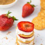 Strawberry Cheesecake RITZwich Snacks