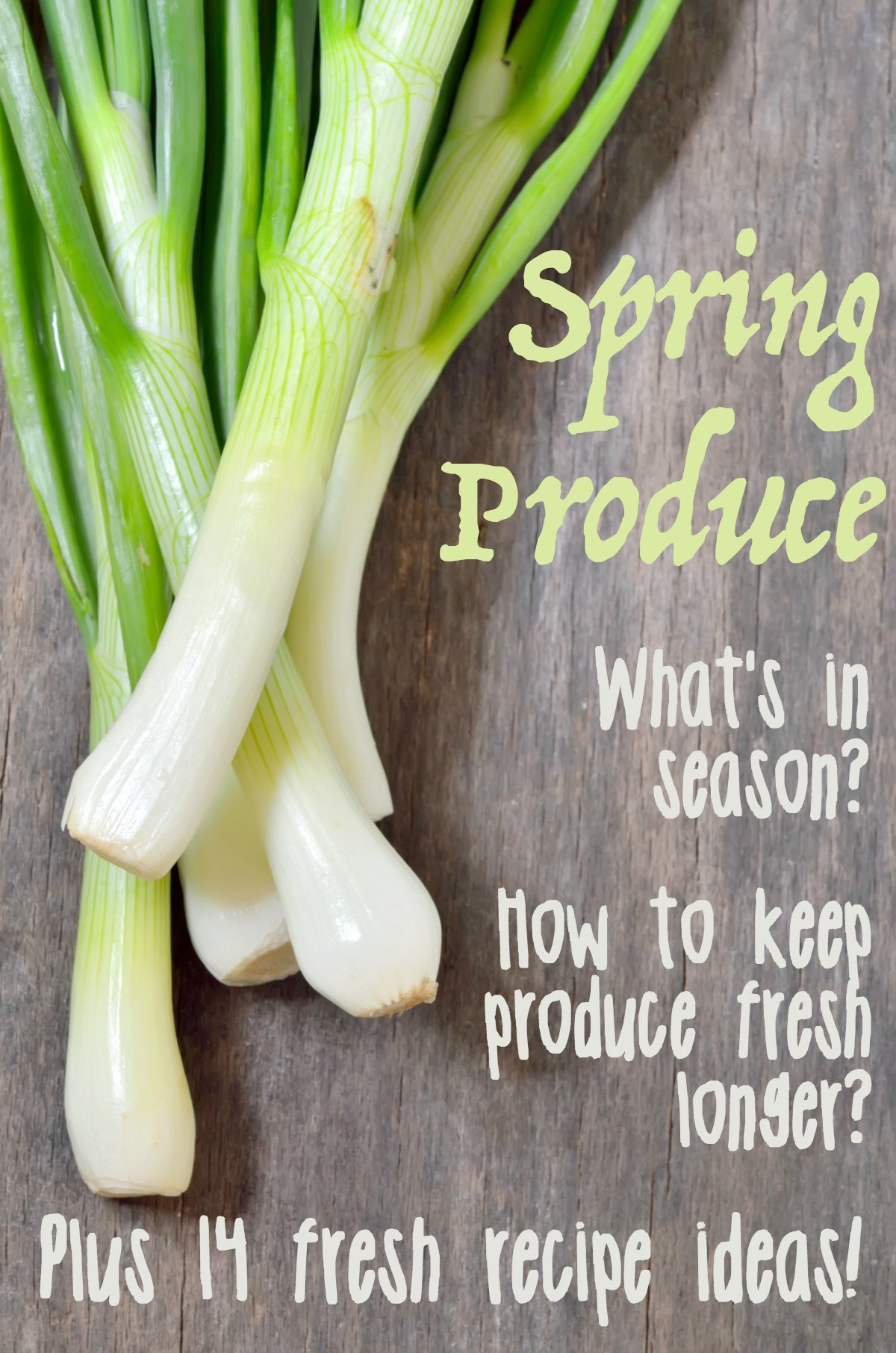 Don't miss this guid to April seasonal produce! Find out what's in season this month, how you can keep it fresh at home, and what to cook with all those fresh fruits and vegetables!