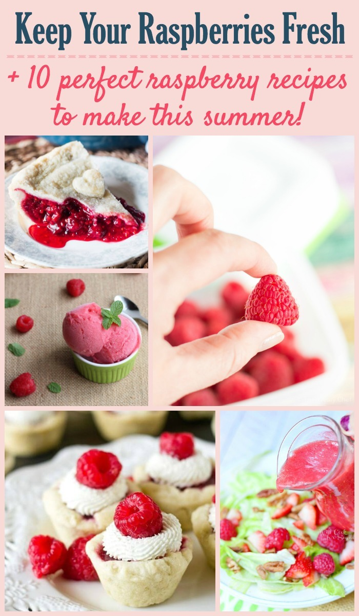 Keeping berries fresh and 10 raspberry recipes for this summer!
