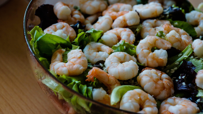 shrimp bowl meal